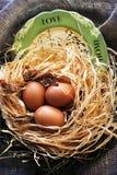 Ευτυχή αυγά ευχετήριων καρτών Πάσχας στο γλυκές σπίτι και την αγάπη φωλιών Στοκ εικόνα με δικαίωμα ελεύθερης χρήσης