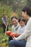 Ευτυχή λαχανικά οικογενειακής συγκομιδής στον κήπο στοκ εικόνες
