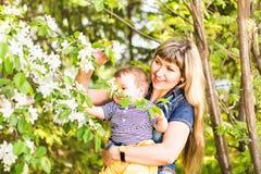 Ευτυχή γυναίκα και παιδί στον όμορφο ανθίζοντας κήπο άνοιξη Έννοια οικογενειακών διακοπών το λουλούδι ημέρας δίνει το γιο μητέρων Στοκ φωτογραφία με δικαίωμα ελεύθερης χρήσης