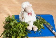 Ευτυχή και πλήρη πρόβατα Στοκ Εικόνα