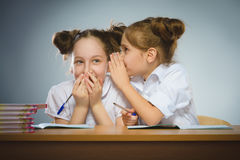 Ευτυχή κορίτσια που κάθονται στο γραφείο στο γκρίζο υπόβαθρο μαύρο σχολείο έννοιας βιβλίων ανασκόπησης copyspace Στοκ Εικόνες