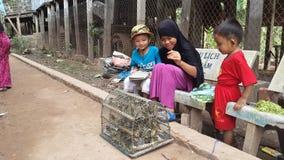 Ευτυχή παιδιά Cham - Trẻ em làNG Chăm Chau 5$α  á» ` γ Στοκ Φωτογραφίες