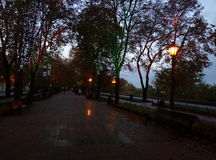 ευτυχή φω'τα πάγκων ουρανού πάρκων στοκ εικόνα με δικαίωμα ελεύθερης χρήσης