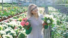 Ευτυχή flowerpots εκμετάλλευσης κηπουρών χαμόγελου θηλυκά 4K απόθεμα βίντεο