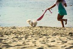 Ευτυχία, κατοικίδιο ζώο, σκυλί, κορίτσι, παραλία, θάλασσα Στοκ Φωτογραφίες
