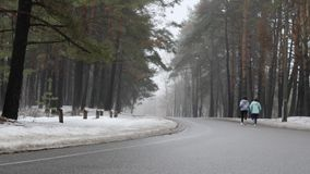 Ευτυχείς ανώτερες και νέες καυκάσιες γυναίκες που τρέχουν στο χιονώδες πάρκο το χειμώνα που μιλά και που χαμογελά Πίσω στατικός π απόθεμα βίντεο