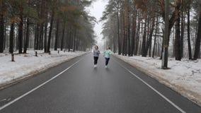 Ευτυχείς ανώτερες και νέες καυκάσιες γυναίκες που τρέχουν στο χιονώδες πάρκο το χειμώνα που μιλά και που χαμογελά Μπροστινός στατ φιλμ μικρού μήκους