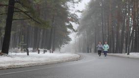 Ευτυχείς ανώτερες και νέες καυκάσιες γυναίκες που τρέχουν στο χιονώδες πάρκο το χειμώνα που μιλά και που χαμογελά Μπροστινός στατ απόθεμα βίντεο