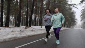 Ευτυχείς ανώτερες και νέες καυκάσιες γυναίκες που τρέχουν στο χιονώδες πάρκο το χειμώνα που μιλά και που χαμογελά Το μέτωπο ακολο απόθεμα βίντεο