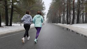 Ευτυχείς ανώτερες και νέες καυκάσιες γυναίκες που τρέχουν στο χιονώδες πάρκο το χειμώνα που μιλά και που χαμογελά Η πλάτη ακολουθ απόθεμα βίντεο