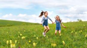 Ευτυχείς αδελφές διδύμων παιδιών που πηδούν και που γελούν το καλοκαίρι Στοκ φωτογραφία με δικαίωμα ελεύθερης χρήσης