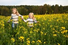 Ευτυχείς αδελφές παιδιών που τρέχουν γύρω από να γελάσει μέσα στοκ φωτογραφία με δικαίωμα ελεύθερης χρήσης