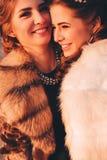 Ευτυχείς αδελφές στον ήλιο Στοκ Εικόνα