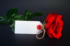 ευτυχείς βαλεντίνοι ημέ&rho κόκκινος αυξήθηκε και μια ευχετήρια κάρτα Στοκ φωτογραφίες με δικαίωμα ελεύθερης χρήσης