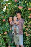 Ευτυχείς γονείς με το παιδί στον κήπο μήλων Στοκ Φωτογραφία