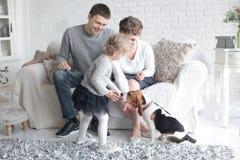 Ευτυχείς γονείς που εξετάζουν την κόρη τους, η οποία ταΐζει το σκυλί στοκ εικόνες