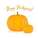 Ευτυχείς εορτασμοί ημέρας των ευχαριστιών με τις κολοκύθες διανυσματική απεικόνιση