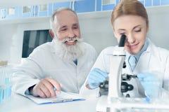 Ευτυχείς επιστήμονες στα άσπρα παλτά που λειτουργούν μαζί με το μικροσκόπιο στο χημικό εργαστήριο Στοκ φωτογραφία με δικαίωμα ελεύθερης χρήσης