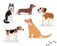 Ευτυχείς διανυσματικοί χαρακτήρες σκυλιών στο άσπρο υπόβαθρο Στοκ εικόνες με δικαίωμα ελεύθερης χρήσης