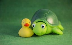 Ευτυχείς καλύτεροι φίλοι παπιών και χελωνών Στοκ Φωτογραφίες
