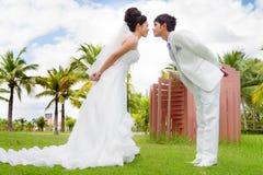 Ευτυχείς νύφη και νεόνυμφος Στοκ Φωτογραφία