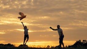 Ευτυχείς οικογενειακοί πατέρας και παιδιά που τρέχουν στο λιβάδι με έναν ικτίνο το καλοκαίρι στο ηλιοβασίλεμα φιλμ μικρού μήκους