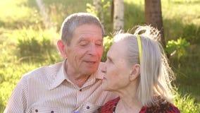 Ευτυχείς παππούδες και γιαγιάδες που κάθονται στο πάρκο στη χλόη απόθεμα βίντεο