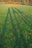 ευτυχείς σκιές Στοκ φωτογραφία με δικαίωμα ελεύθερης χρήσης