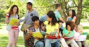Ευτυχείς σπουδαστές που διαβάζουν και που κουβεντιάζουν μαζί έξω στην πανεπιστημιούπολη απόθεμα βίντεο
