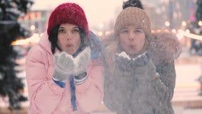 Ευτυχείς φίλοι γυναικών που φυσούν το χιόνι στο χειμώνα, σε αργή κίνηση φιλμ μικρού μήκους