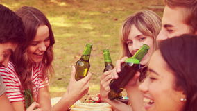 Ευτυχείς φίλοι που ψήνουν μαζί κατά τη διάρκεια του μεσημεριανού γεύματος στο πάρκο απόθεμα βίντεο