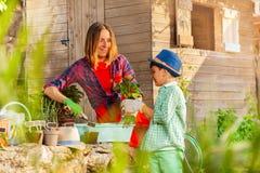 Ευτυχείς potting mom και γιων εγκαταστάσεις στο κατώφλι στοκ εικόνα με δικαίωμα ελεύθερης χρήσης