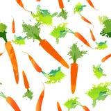 Ευτυχισμένη ζωή eco σχεδίων σχεδίων καρότων Στοκ Εικόνες