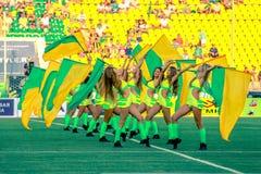 Ευχάριστες κιτρινοπράσινες μαζορέτες Στοκ Εικόνες