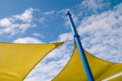 ευχαρίστηση κίτρινη Στοκ Εικόνες