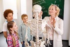 Ευχαριστημένος έξυπνος δάσκαλος που μιλά για τα ανθρώπινα κόκκαλα στοκ εικόνα