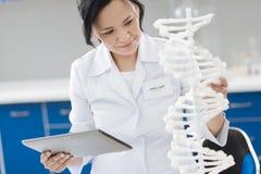 Ευχαριστημένος βιολογικός μηχανικός που μελετά τις γενετικές μεταλλαγές στοκ εικόνες