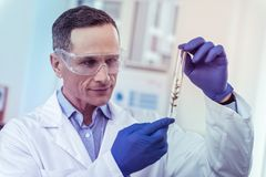 Ευχαριστημένος ιατρικός εργαζόμενος που εξετάζει το βιολογικό ενεργό υλικό στοκ εικόνα