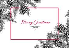 Ευχετήρια κάρτα διακοπών Χριστουγέννων με το δέντρο έλατου και τον κώνο πεύκων Vec Διανυσματική απεικόνιση