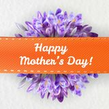 Ευχετήρια κάρτα ημέρας μητέρων με τα λουλούδια κρόκων Στοκ εικόνες με δικαίωμα ελεύθερης χρήσης