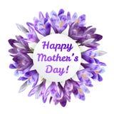 Ευχετήρια κάρτα ημέρας μητέρων με τα λουλούδια κρόκων Στοκ φωτογραφίες με δικαίωμα ελεύθερης χρήσης