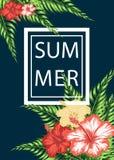 Ευχετήρια κάρτα με τα εξωτικά λουλούδια Στοκ Φωτογραφίες