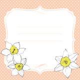 Ευχετήρια κάρτα με τα λουλούδια daffodil Στοκ Φωτογραφίες
