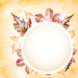 Ευχετήρια κάρτα φύλλων φθινοπώρου Στοκ Εικόνες