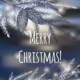 Ευχετήρια κάρτα Χριστουγέννων με τον κλάδο πεύκων Στοκ Φωτογραφίες