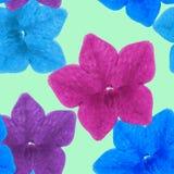 Ευώδης καπνός Άνευ ραφής σύσταση σχεδίων των λουλουδιών Floral BA απεικόνιση αποθεμάτων