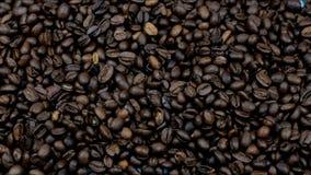 ευώδης ψημένη πτώση φασολιών καφέ φιλμ μικρού μήκους