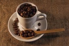 Ευώδη ψημένα φασόλια καφέ καφετιά και φλυτζάνι στοκ φωτογραφίες