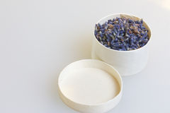 ευώδες lavender λουλουδιών Στοκ φωτογραφία με δικαίωμα ελεύθερης χρήσης