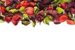 Ευώδη ξηρά λουλούδια Στοκ Φωτογραφίες